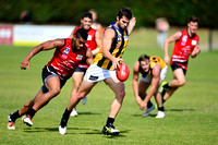 AFL Development League Sandringham vs Frankston Practice Match April 11th 2015