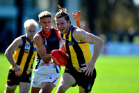 AFL Development League Sandringham vs Casey Round 6 2016