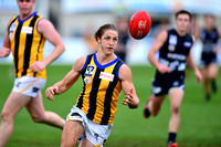 AFL Development League Sandringham vs Northern Blues Round 9 2014