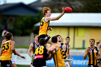 AFL Development League Sandringham vs Werribee Round 7 2014