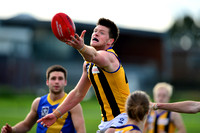 AFL Development League Sandringham vs Williamstown Round 11 2014