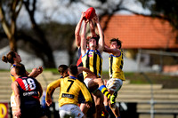 AFL Development League Sandringham vs Coburg Round 14 2016