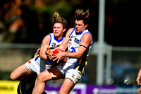AFL Development League Sandringham vs Werribee Round 21 2016
